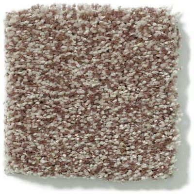 Shaw Floors Vivacious II Pecan 00701_E9009