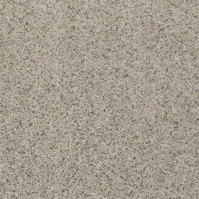 Shaw Floors Spice It Up Kensington 00700_E9013