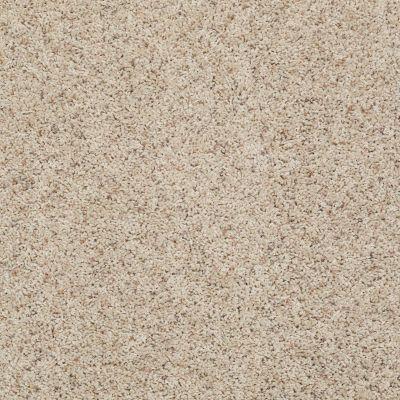 Shaw Floors Spice It Up Oakwood 00702_E9013