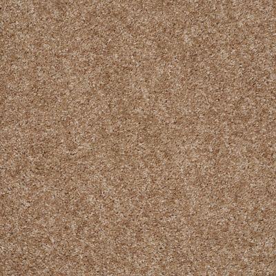Shaw Floors Act On It Dapper Tan 00702_E9015