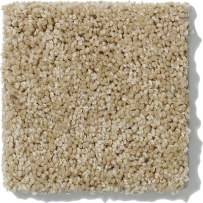 Shaw Floors Value Collections Origins Net Wool Skein 00111_E9025