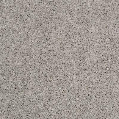 Shaw Floors Value Collections Origins Net Sea Salt 00512_E9025