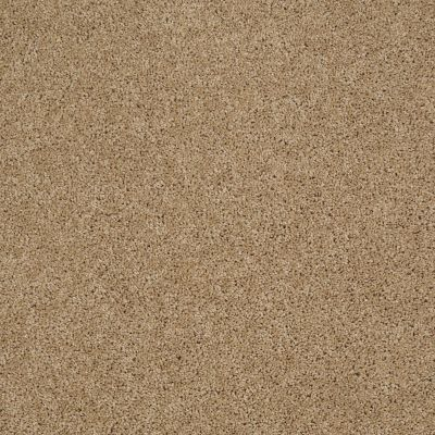 Shaw Floors Value Collections Origins Net Natural Wood 00701_E9025