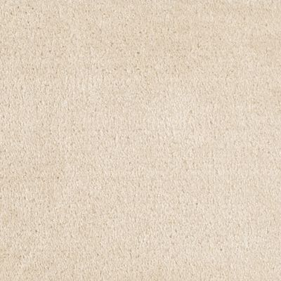 Shaw Floors Value Collections Optimum Net Wool Skin 00143_E9046