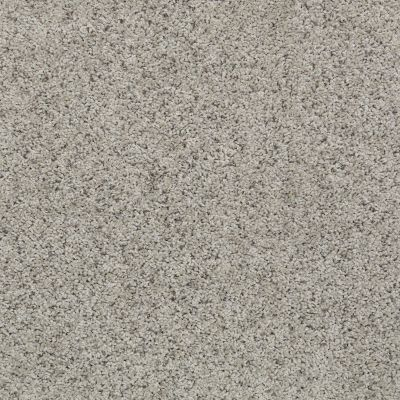 Shaw Floors Value Collections Spice It Up Net Cool Slate 00703_E9090