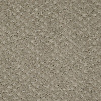 Shaw Floors Value Collections Pace Setter Net Gray Flannel 00511_E9137