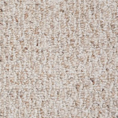 Shaw Floors Value Collections Pembrooke 12′ Net Champagne 00104_E9151