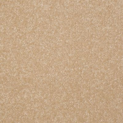 Shaw Floors Value Collections Passageway 2 12 Silk 00104_E9153