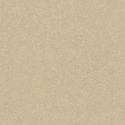 Shaw Floors Value Collections Passageway 2 12 Linen 00107_E9153