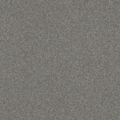 Shaw Floors Value Collections Passageway 2 12 Pewter 00501_E9153