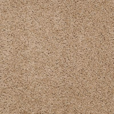 Shaw Floors Value Collections Thrive Net French Bread 00200_E9169