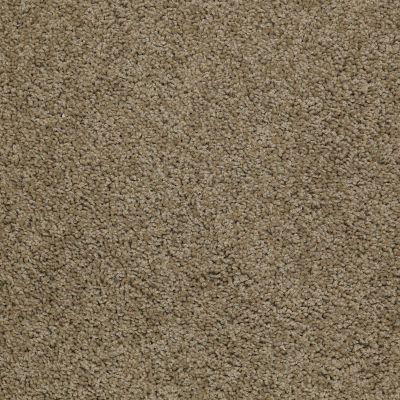 Shaw Floors Value Collections Thrive Net Desert Palm 00301_E9169