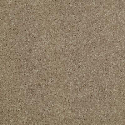 Shaw Floors For Pete's Sake Pueblo 00111_E9171