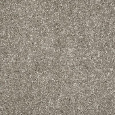 Shaw Floors For Pete's Sake Wood Beam 00731_E9171