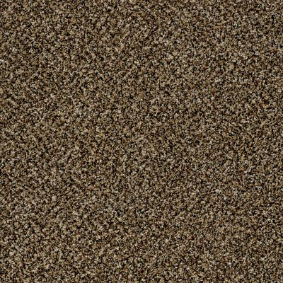 Shaw Floors Because We Can I 12′ Sandpiper 00201_E9186