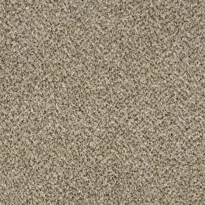 Shaw Floors Because We Can II 12′ Sea Shell 00100_E9187