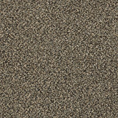 Shaw Floors Because We Can II 12′ Muffin Top 00200_E9187
