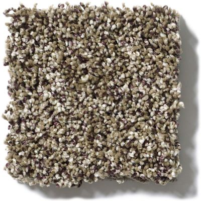 Shaw Floors Simply The Best Because We Can II 12′ Pinecone 00701_E9187