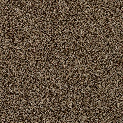 Shaw Floors Simply The Best Because We Can III 12′ Raw Sienna 00202_E9188