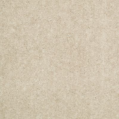 Shaw Floors Value Collections Dyersburg Classic 15′ Net Casual Cream 00230_E9193
