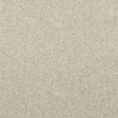 Shaw Floors Value Collections Dyersburg Classic 15′ Net Dove 55700_E9193
