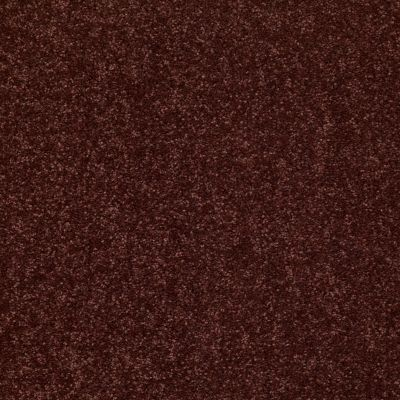 Shaw Floors Value Collections Dyersburg Classic 15′ Net Coffee 55755_E9193
