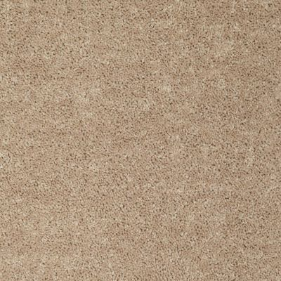 Shaw Floors Value Collections Briceville Classic 12′ Net Wild Dune 00201_E9196