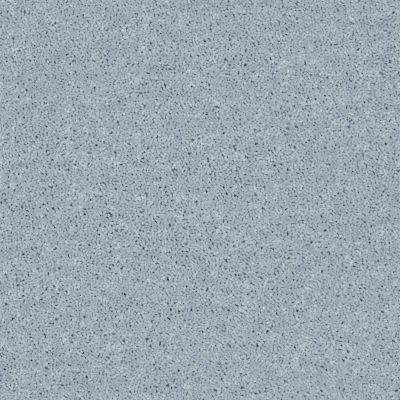 Shaw Floors Value Collections Briceville Classic 12′ Net Silver Spoon 00542_E9196