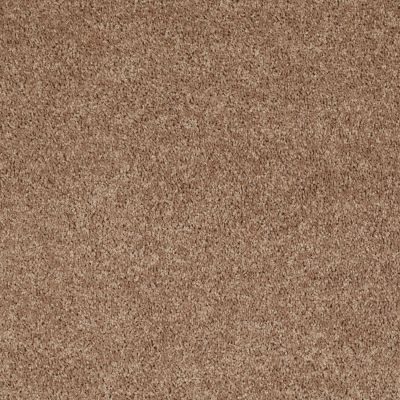 Shaw Floors Value Collections Briceville Classic 15′ Net Eagles Nest 00704_E9197