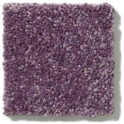 Shaw Floors Value Collections Newbern Classic 12′ Net Violet Crush 00930_E9198