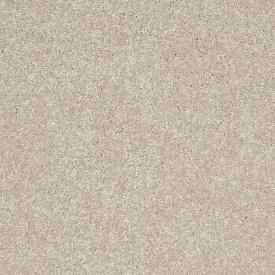 Shaw Floors Value Collections Newbern Classic 12′ Net Dove 55700_E9198