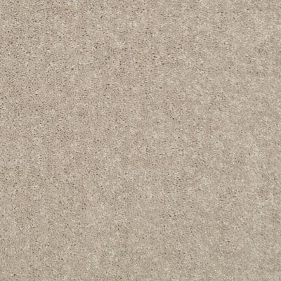 Shaw Floors Value Collections Newbern Classic 15′ Net Plaster 55752_E9199