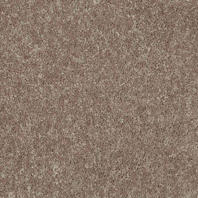 Shaw Floors Value Collections Fielder's Choice 12 Net River Slate 00720_E9205