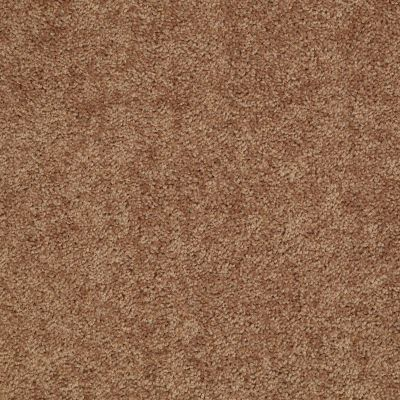 Shaw Floors Value Collections Fielder's Choice 12 Net Desert Sunrise 00721_E9205