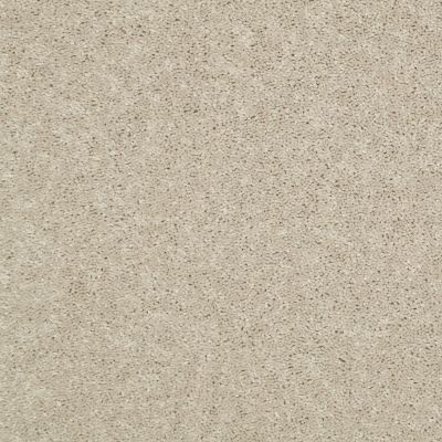 Shaw Floors Value Collections Dyersburg Classic 12 Net Sand Dollar 00116_E9206