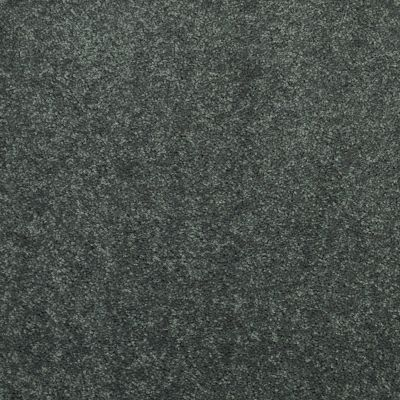 Shaw Floors Value Collections Dyersburg Classic 12 Net Steel Beam 00534_E9206