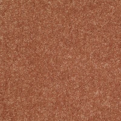 Shaw Floors Value Collections Dyersburg Classic 12 Net Sunburst 00630_E9206