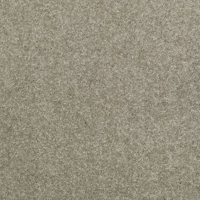 Shaw Floors Value Collections Dyersburg Classic 12 Net Suede 00731_E9206