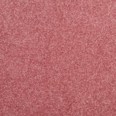 Shaw Floors Value Collections Dyersburg Classic 12 Net Sassy Pink 00830_E9206