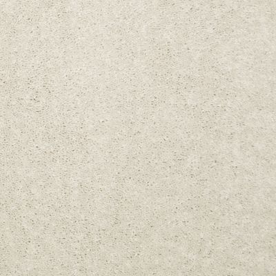 Shaw Floors Value Collections Dyersburg Classic 12 Net Ivory Tint 55101_E9206