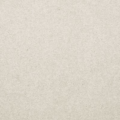 Shaw Floors Value Collections Dyersburg Classic 12 Net Taupe 55105_E9206