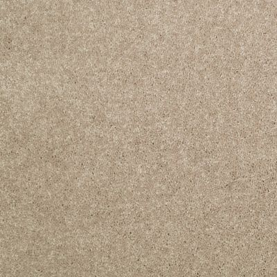 Shaw Floors Value Collections Dyersburg Classic 12 Net Dusty Trail 55793_E9206