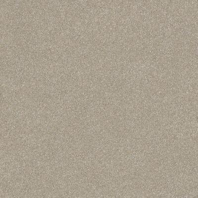 Shaw Floors Foundations Luxuriant Smoke Signal 00170_E9253