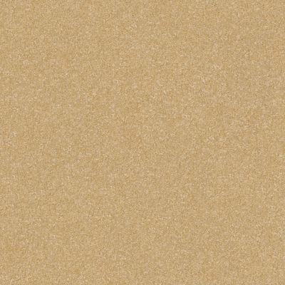 Shaw Floors Foundations Luxuriant Popsicle Stick 00260_E9253