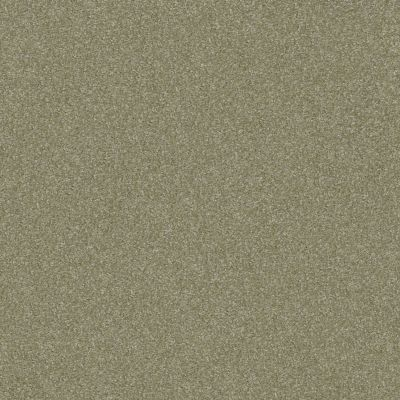 Shaw Floors Luxuriant Silver Sage 00360_E9253