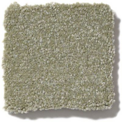 Shaw Floors Foundations Luxuriant Silver Sage 00360_E9253