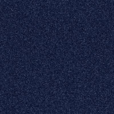 Shaw Floors Luxuriant Sail Fish 00462_E9253