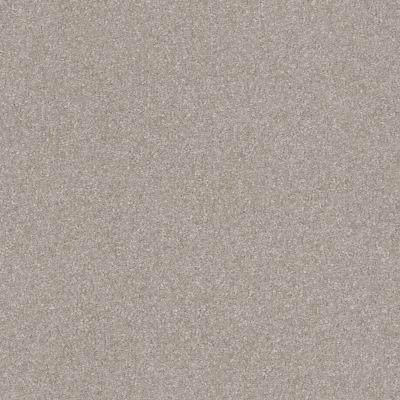 Shaw Floors Luxuriant Stonehenge 00560_E9253
