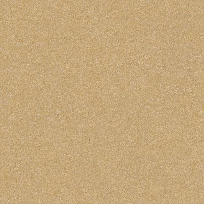 Shaw Floors Foundations Prestigious Popsicle Stick 00260_E9255