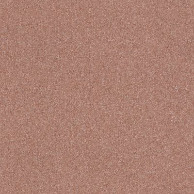 Shaw Floors Foundations Prestigious Crimson Twilight 00860_E9255